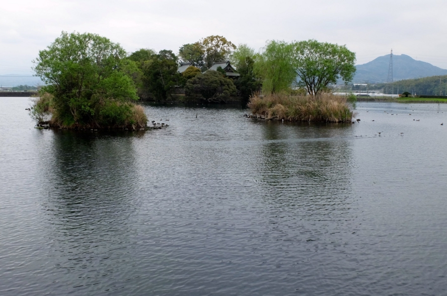 浮島神社の池(熊本県嘉島) - 水辺遍路