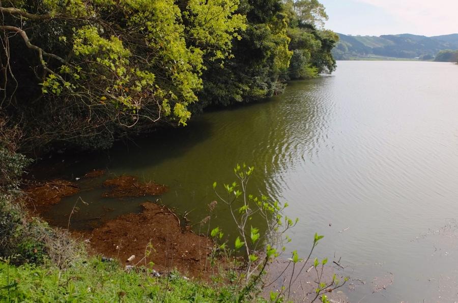 諏訪の池(長崎県雲仙) - 水辺遍路