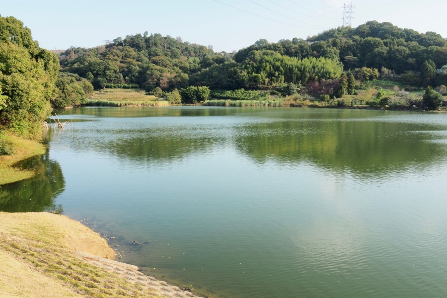 f:id:cippillo:20161217115216j:plain