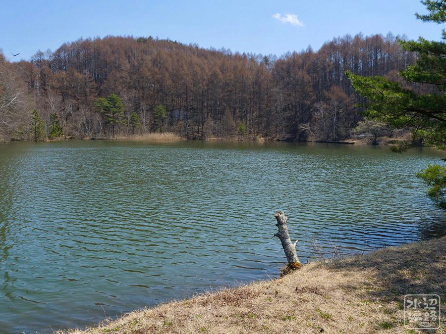 白樺湖 長野県麻積 水辺遍路