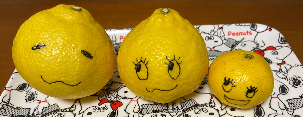 f:id:citrusmaxima:20210217211325j:image