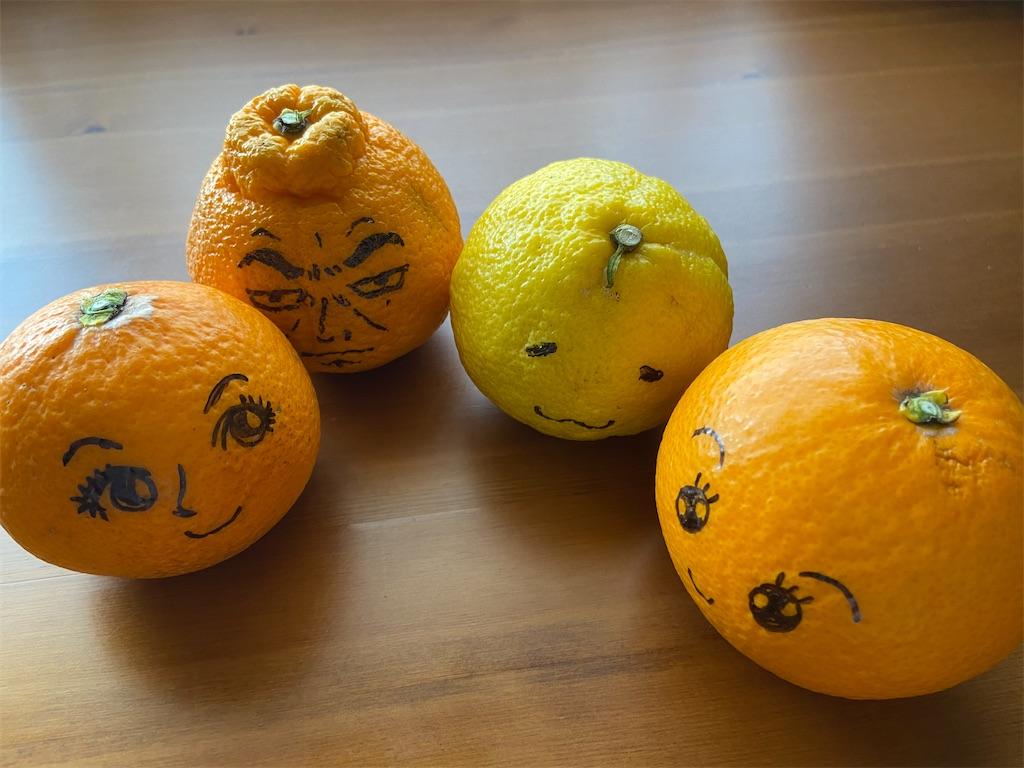 f:id:citrusmaxima:20210411162123j:image