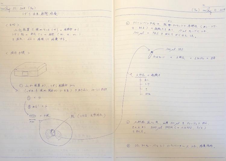 f:id:cleanmeat-kyoto:20180602140206j:plain