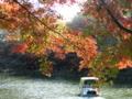 秋の井の頭公園