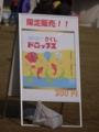 [熱気球][長野旅行]佐久バルーンフェスティバル2012