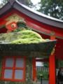[箱根旅行]箱根神社