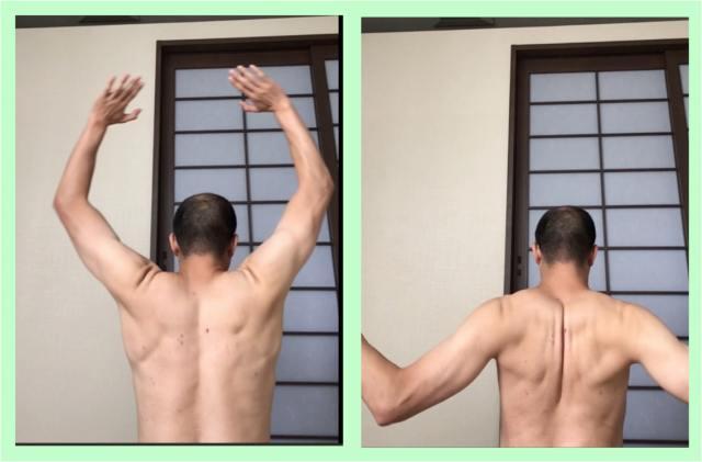 肩 甲骨 可動 域 ストレッチ