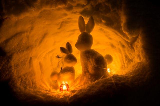 狡兎の24時間LED照明計画