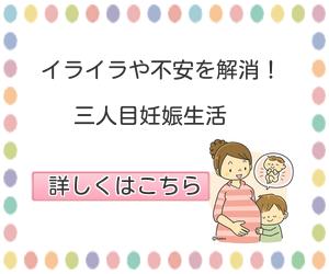 f:id:cmayumama:20170225210600p:plain