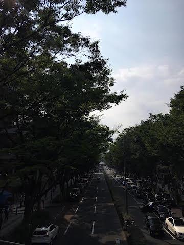 f:id:cnokichi:20190705153639j:plain