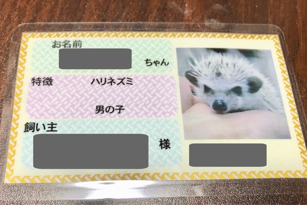 f:id:co-hedgehog:20170523232119j:plain