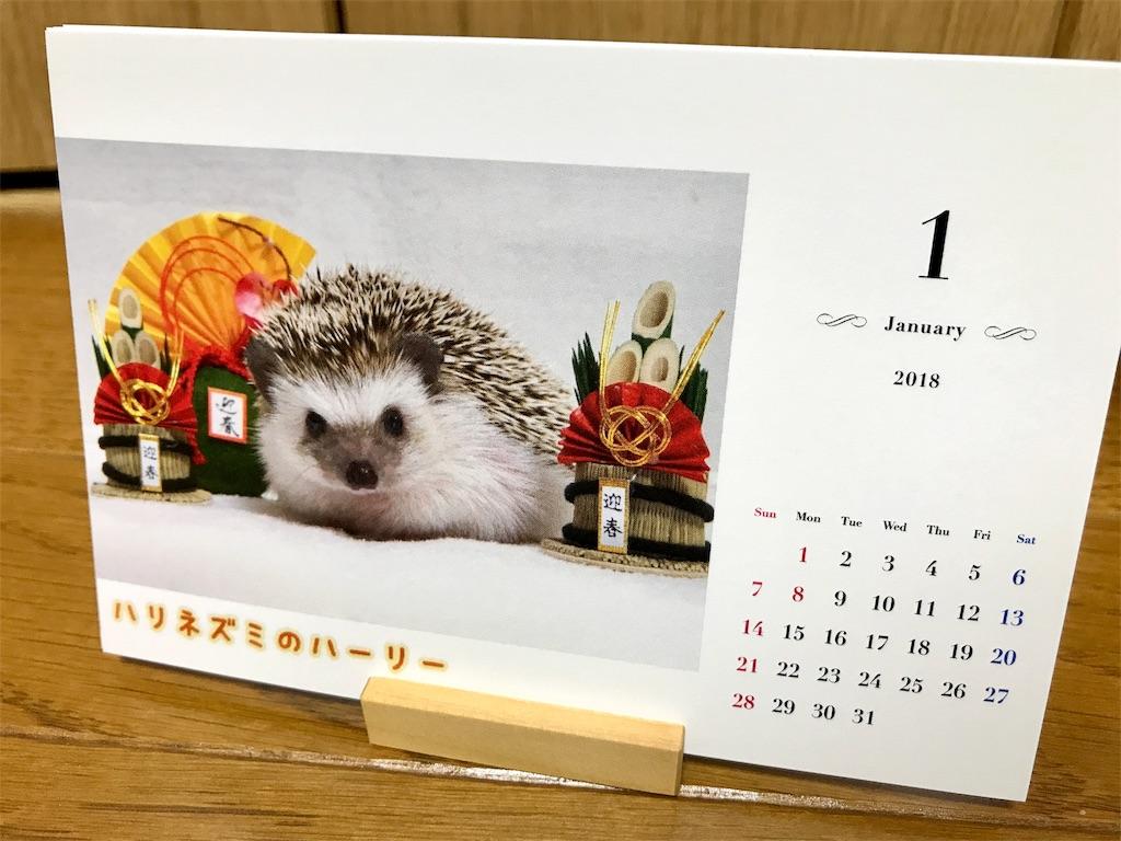 f:id:co-hedgehog:20171024191414j:image