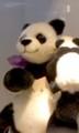 銀座松屋のディスプレイ:ママパンダ、指輪ゴージャスすぎですよ!