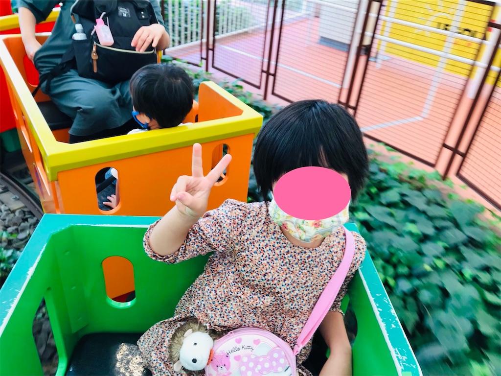 f:id:cobumaki:20201123121241j:plain