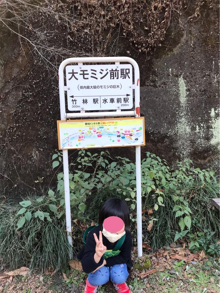 f:id:cobumaki:20201214143418j:plain
