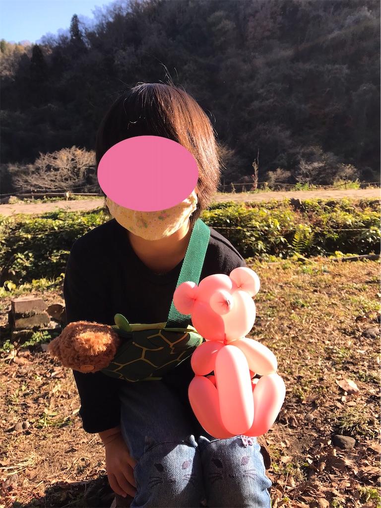 f:id:cobumaki:20201214204522j:plain