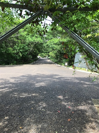 f:id:cobumaki:20210607145729j:image