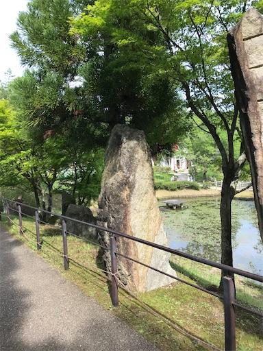 f:id:cobumaki:20210607145746j:image