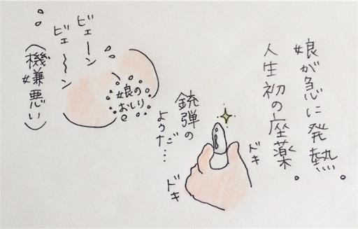 f:id:cochimi-cochimi:20170609150733j:image
