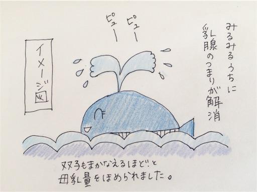 f:id:cochimi-cochimi:20170619154832j:image