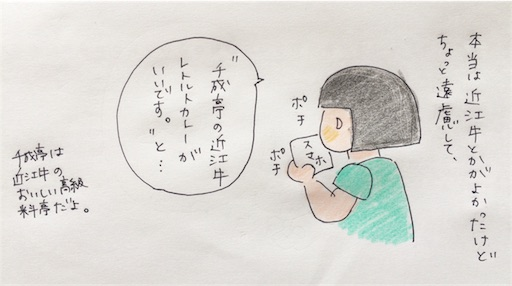 f:id:cochimi-cochimi:20170623150510j:image