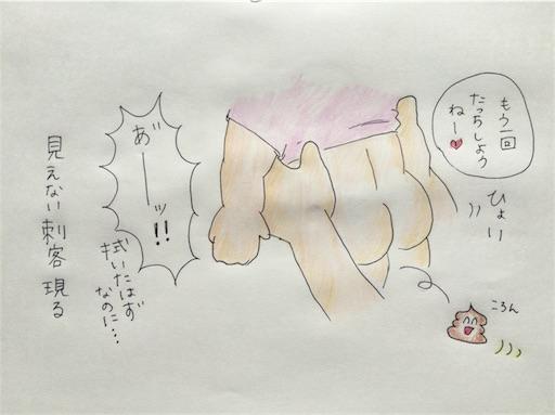 f:id:cochimi-cochimi:20170706175347j:image