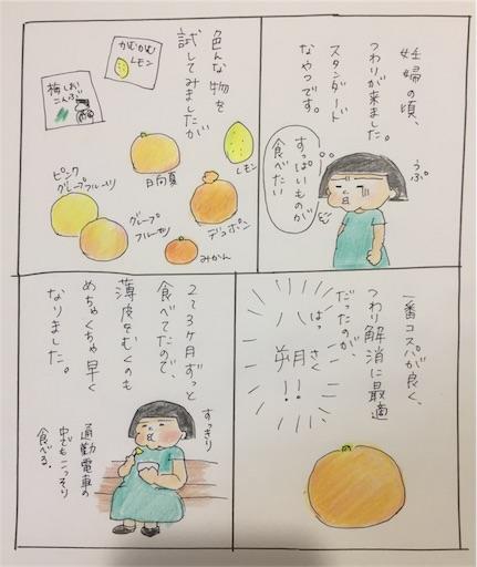 f:id:cochimi-cochimi:20170801192524j:image