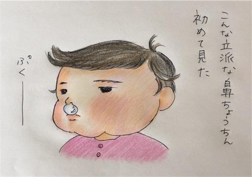 f:id:cochimi-cochimi:20170921133947j:image