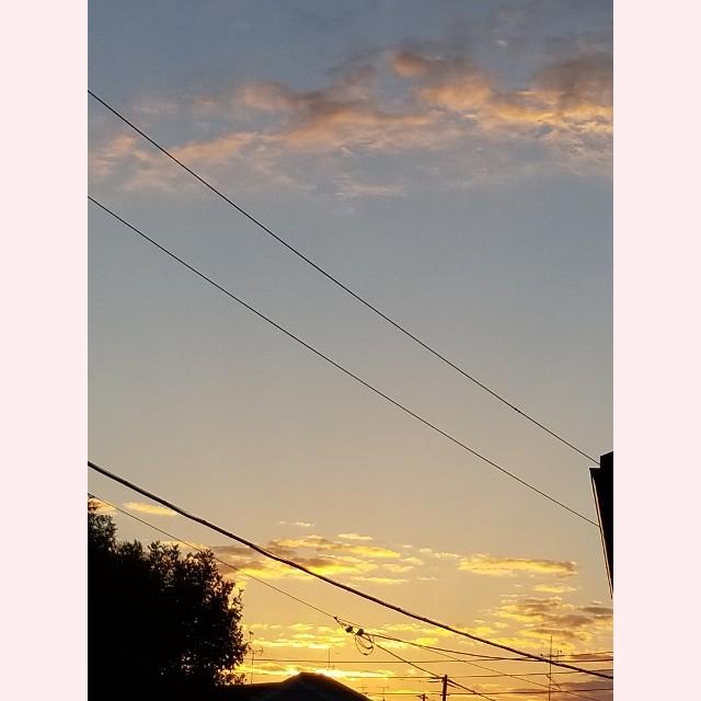 f:id:coco-nano:20181103065919j:image