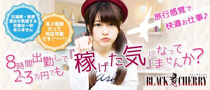 f:id:cocoa-club-jp:20190517000154p:plain