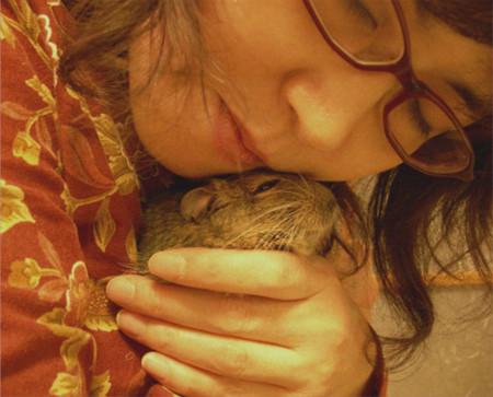 f:id:cocoanuts:20080703234833j:image