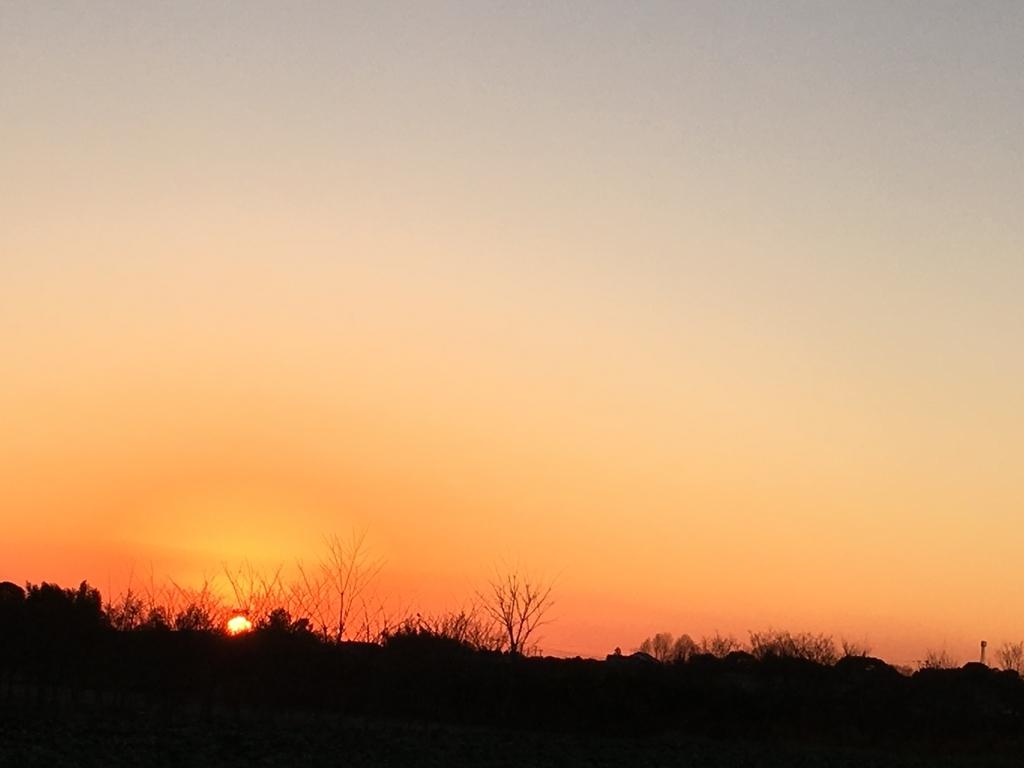 美しい夕日