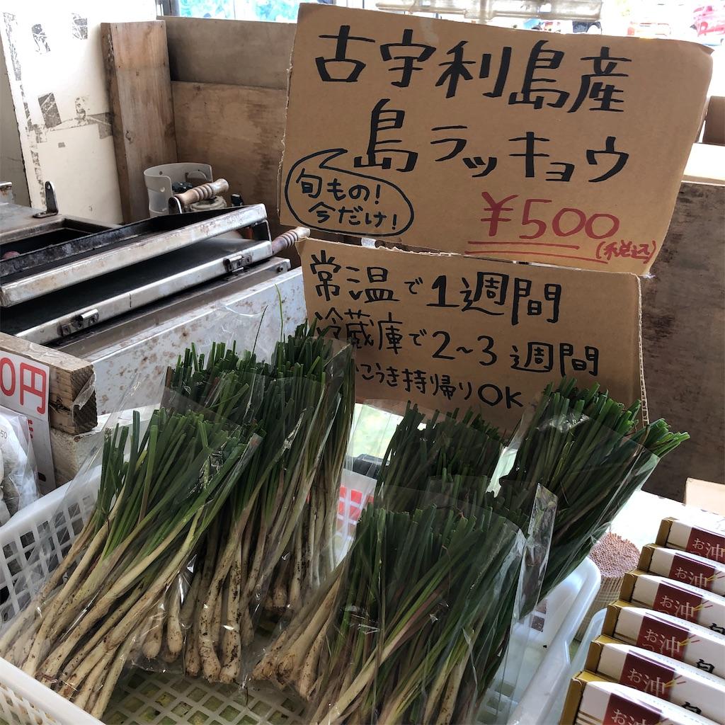 f:id:cocomico_shokuyojo:20200118115355j:image