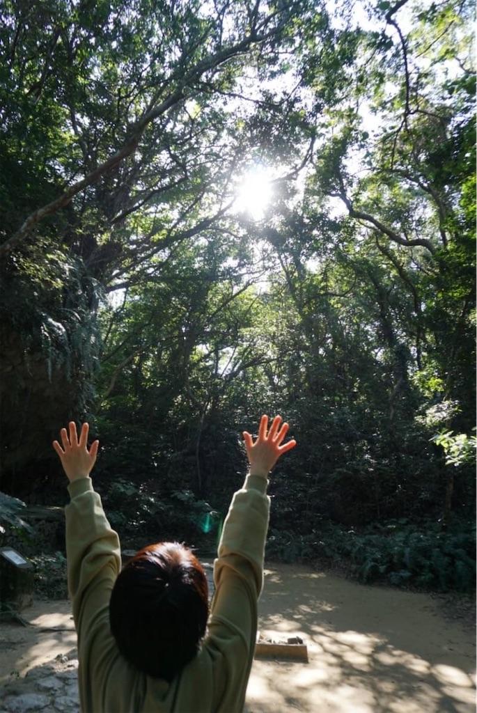 f:id:cocomico_shokuyojo:20200118115615j:image