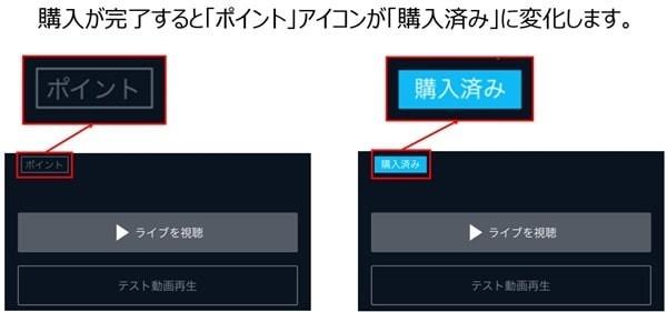 宝塚歌劇・ライブ動画の購入方法を説明