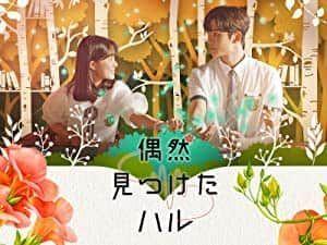 韓流ドラマ「偶然見つけたハル」