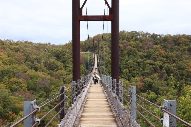 星のブランコの吊り橋