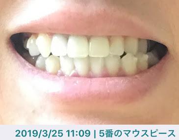 f:id:coconecosan:20190325113205j:plain