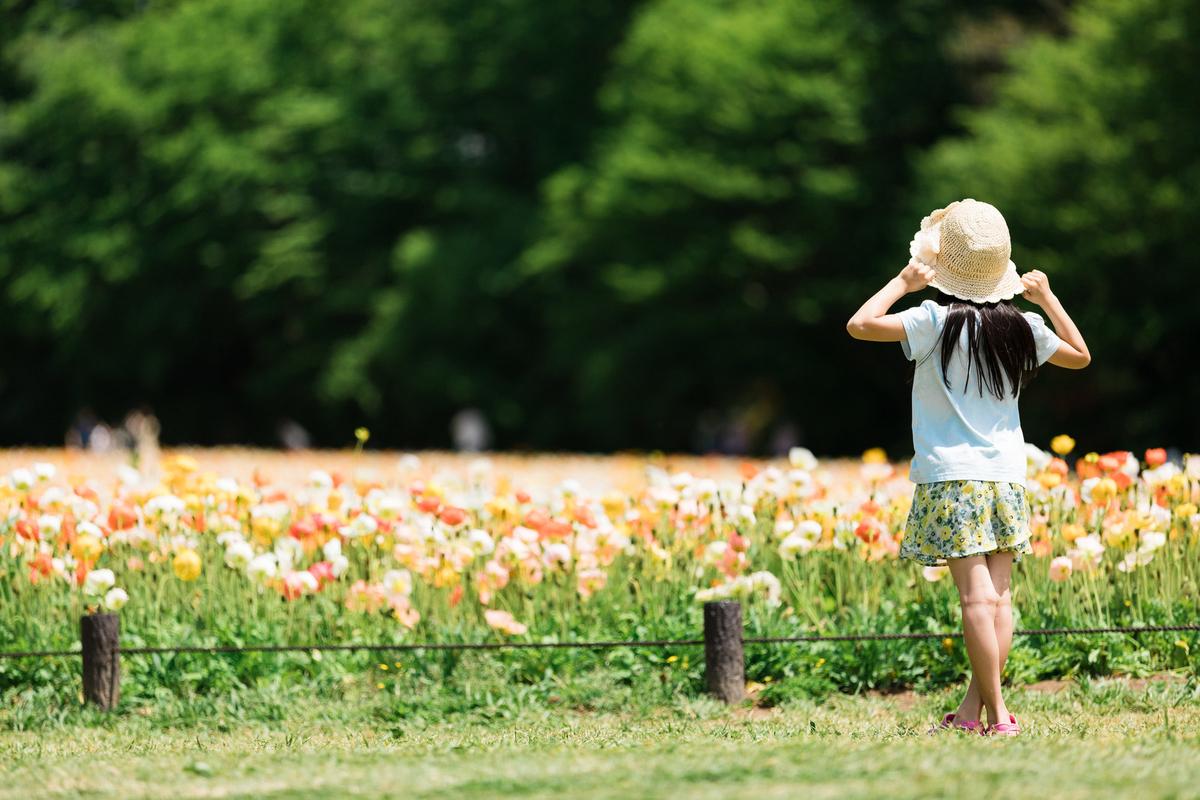 f:id:coconokurashi:20200127105412j:plain