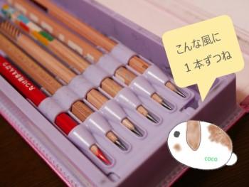 小学生の筆箱に入っている6本の鉛筆