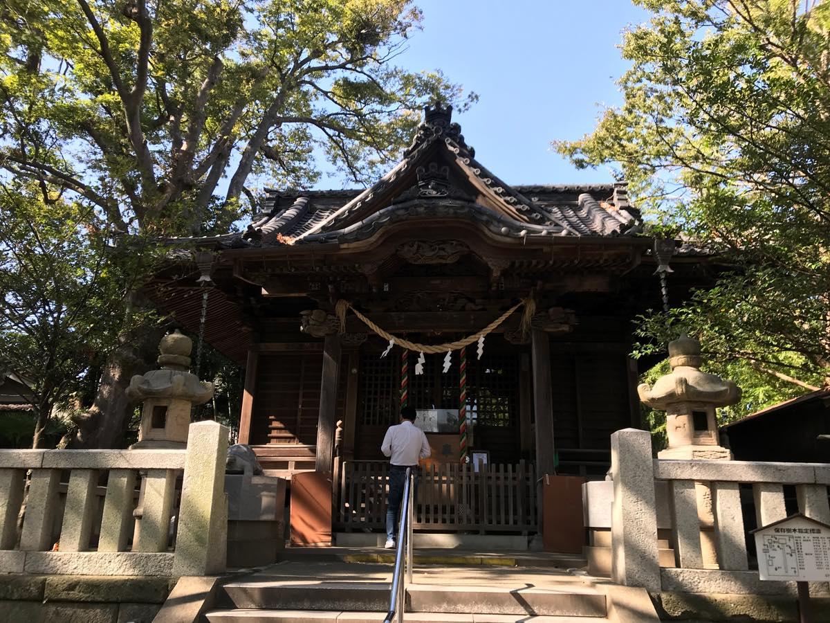 ここのつブログ 逗子亀岡八幡宮