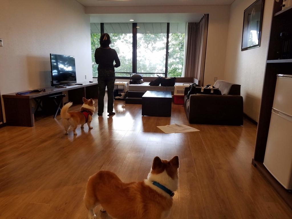 犬と泊まれる部屋