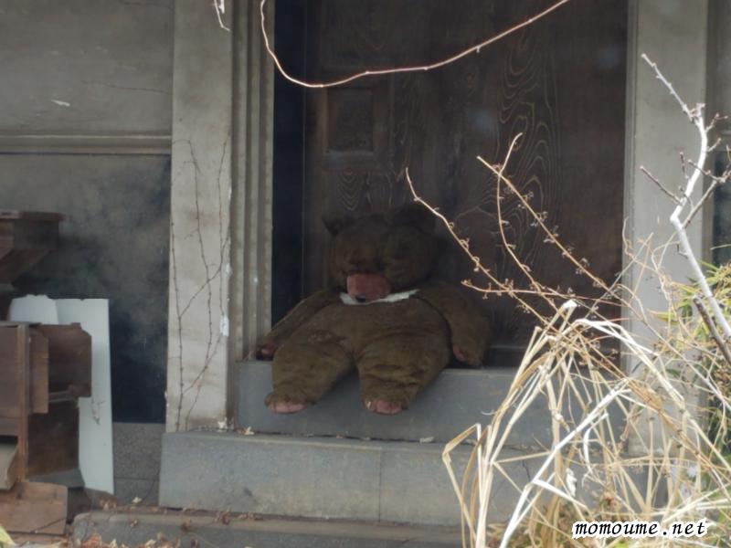井泉庵 小諸市 隣のお家のクマ