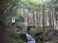 愛知県道504号線 - 柿畑川の上流へ(東薗目側)