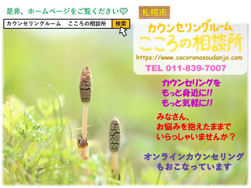 f:id:cocoronosoudanjo:20210514114832j:plain