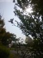 鳥取、大山パーキングの空