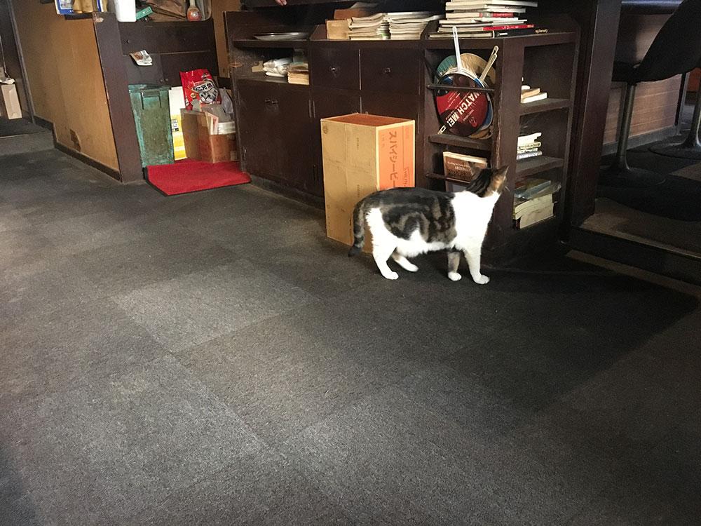 f:id:coffeeroom:20181028173253j:plain