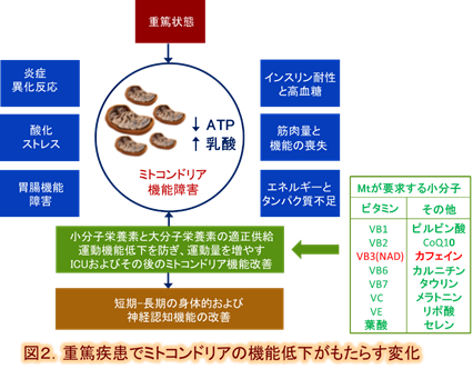 f:id:coffees_for_healthy_life:20190501120250p:plain