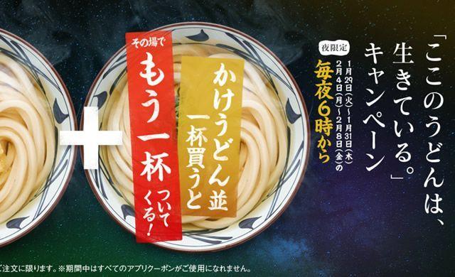 f:id:cogi-kaicho:20190211152629j:plain