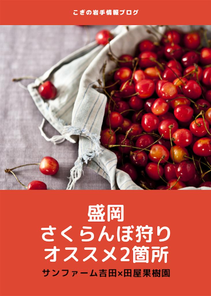 f:id:cogi-kaicho:20190623152711p:image